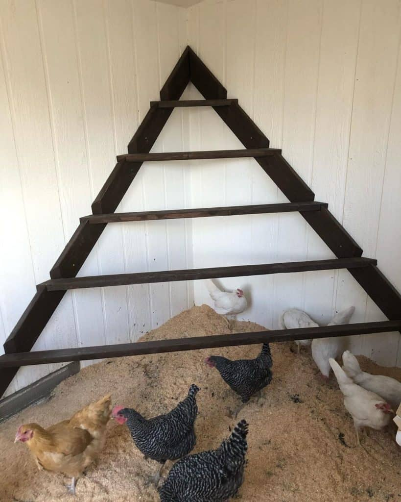how to make a chicken roost