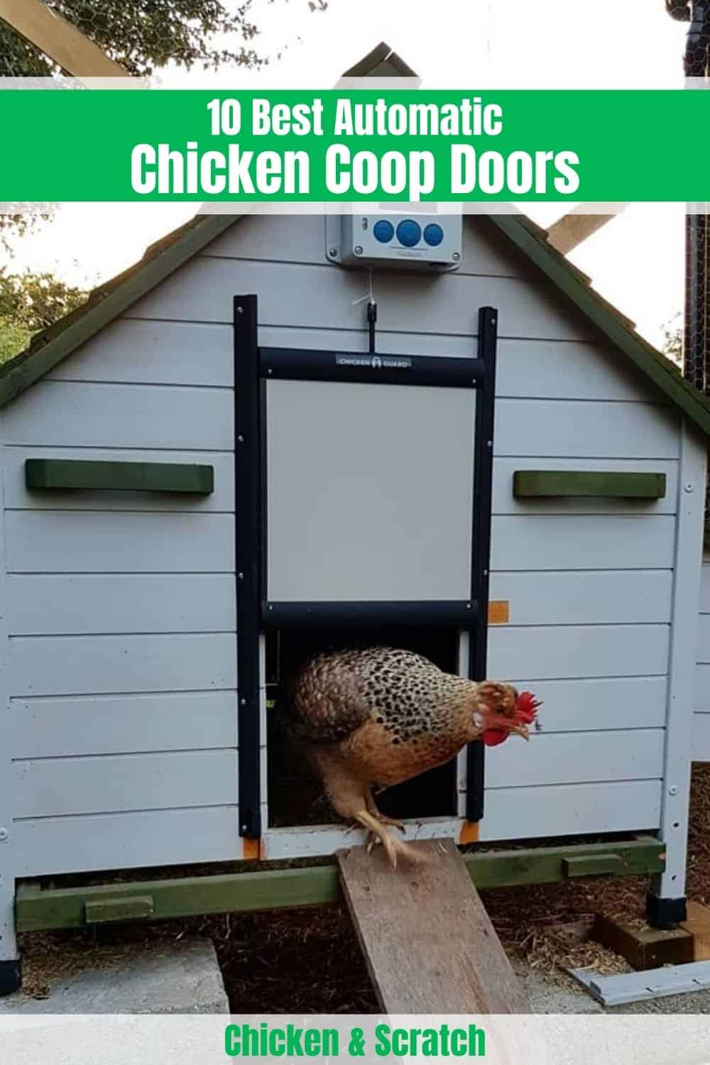 best automatic chicken door ChickenGuard