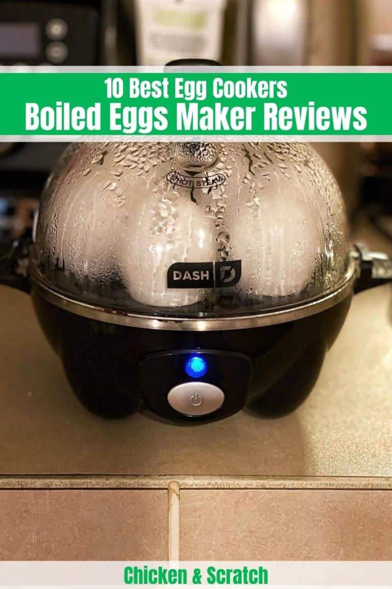 best egg cooker