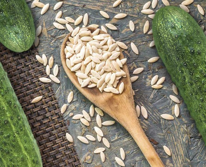 Can Chickens Eat Cucumber Seeds