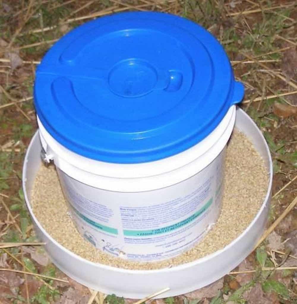 bucket chicken feeder