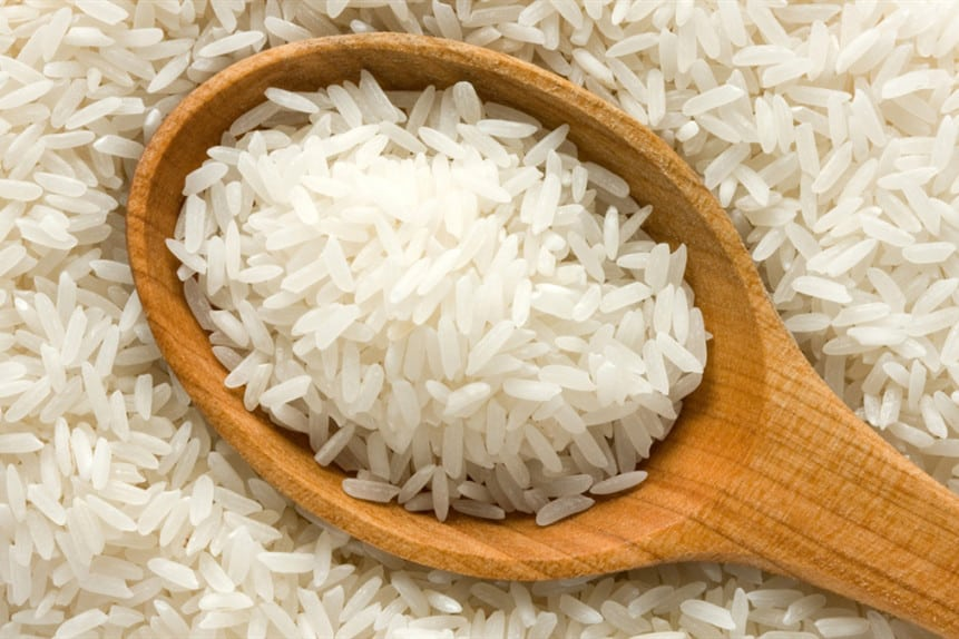 can chickens have rice