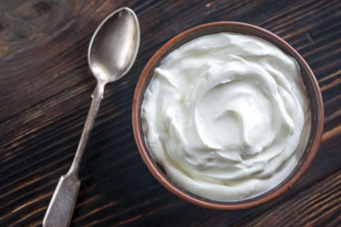 chicken eat Greek yogurt