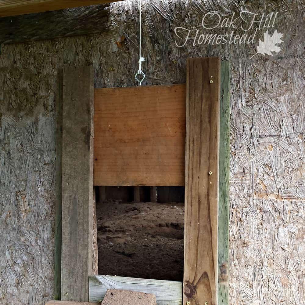 diy chicken coop door