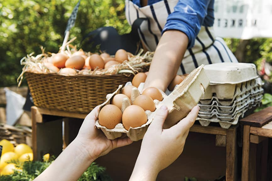 selling eggs at farmers market