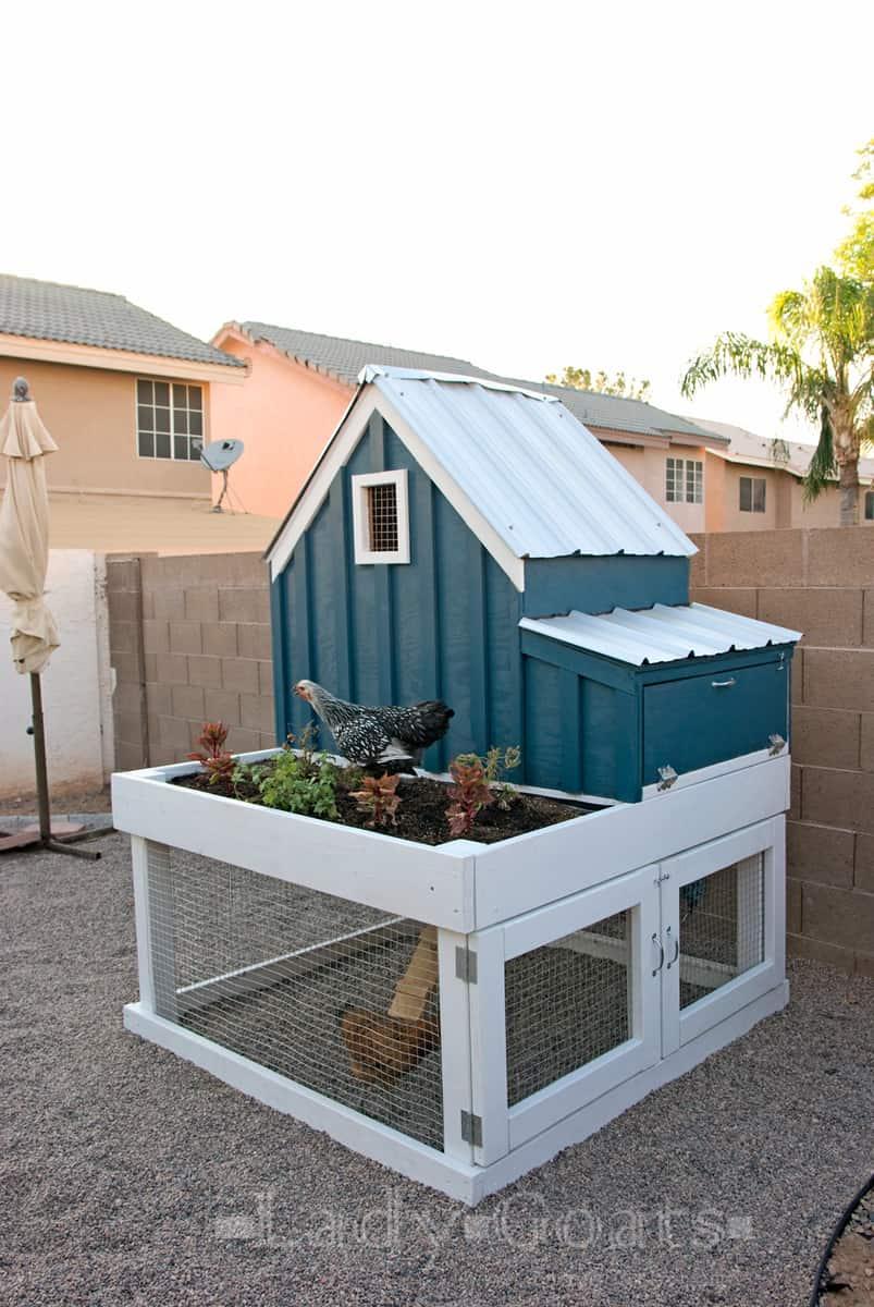 DIY Chicken Coop Plan