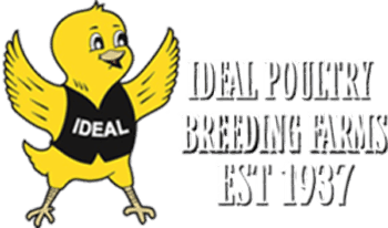 Ideal Poultry