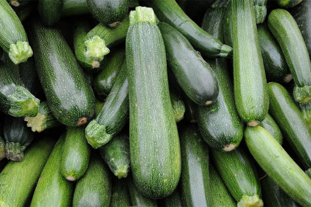 are zucchini leaves poisonous