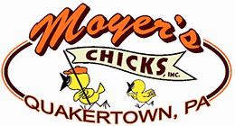 Moyer's Chicks