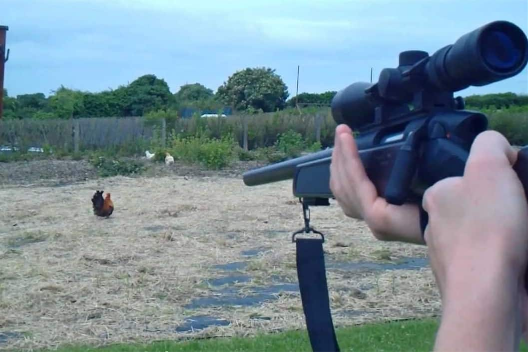 best way to kill a chicken