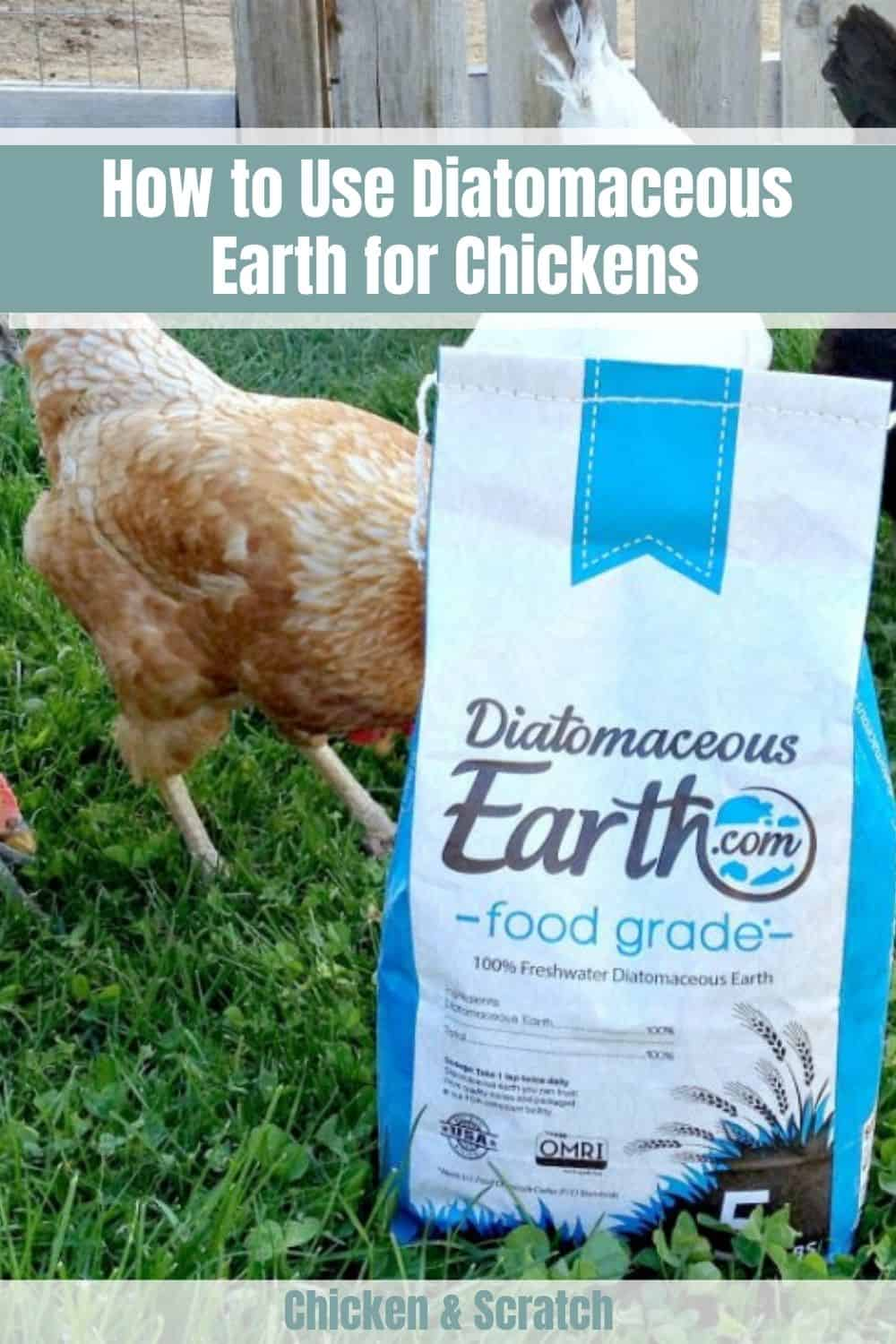 diatomaceous earth chickens