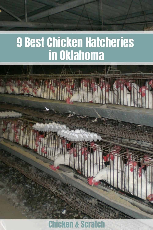 hatcheries in oklahoma